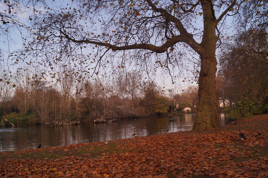 St Jame's Park, London, Parks, Romantic autumn days, Nature in the city, London Blogger